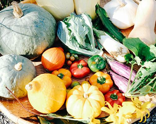 色とりどりの野菜の写真